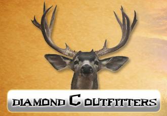 DiamondCOutfittersCrop